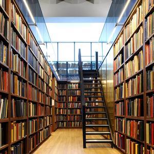 Библиотеки Ефимовского